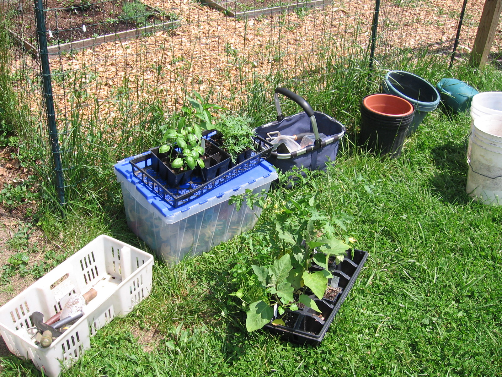 School vegetable gardens - At The Montessori School The Eight 4 X 4 Square Gardens Along With Two 8 X 3 Toddler Gardens Are More Than One Teacher With Rotating Classes Can Manage